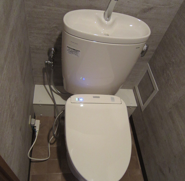 iwasaki toilet